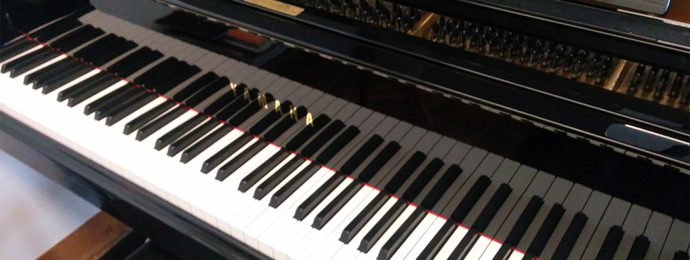 Digitale Piano kopen, huren of leasen? We bezorgen door heel Nederland, dus ook in Amstelveen, Almere, Beverwijk, Delft, Den Haag, Hoofddorp, Haarlem, IJmuiden, Leiden en Rotterdam, Aalsmeer, Alkmaar, Blaricum, Bloemendaal, Bussum, Hilversum, Huizen, Naarden, Laren, Purmerend en Zaandam.