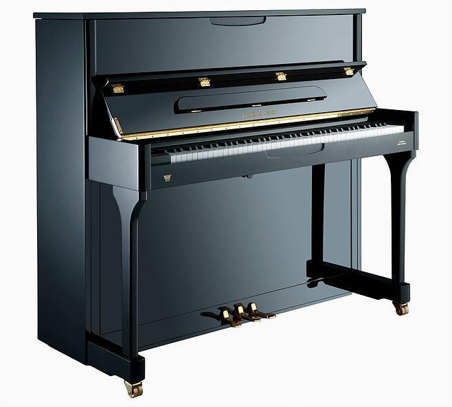 Johannes Seiler 118 Traditio Silent Piano